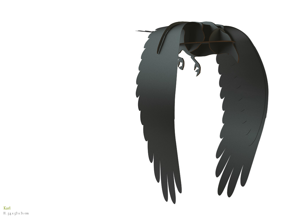 The Ravens Karl Ibride
