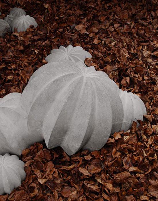 Aylin Langreuter cactus, 2009  calcestruzzo
