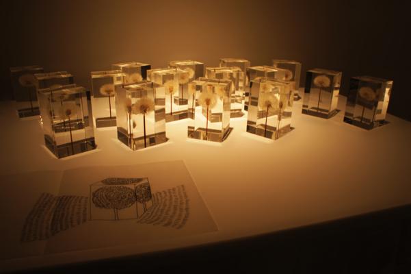 Tampodo di Takao Inoue TOKYO DESIGNERS WEEK, Milano Salone del Mobile 2014