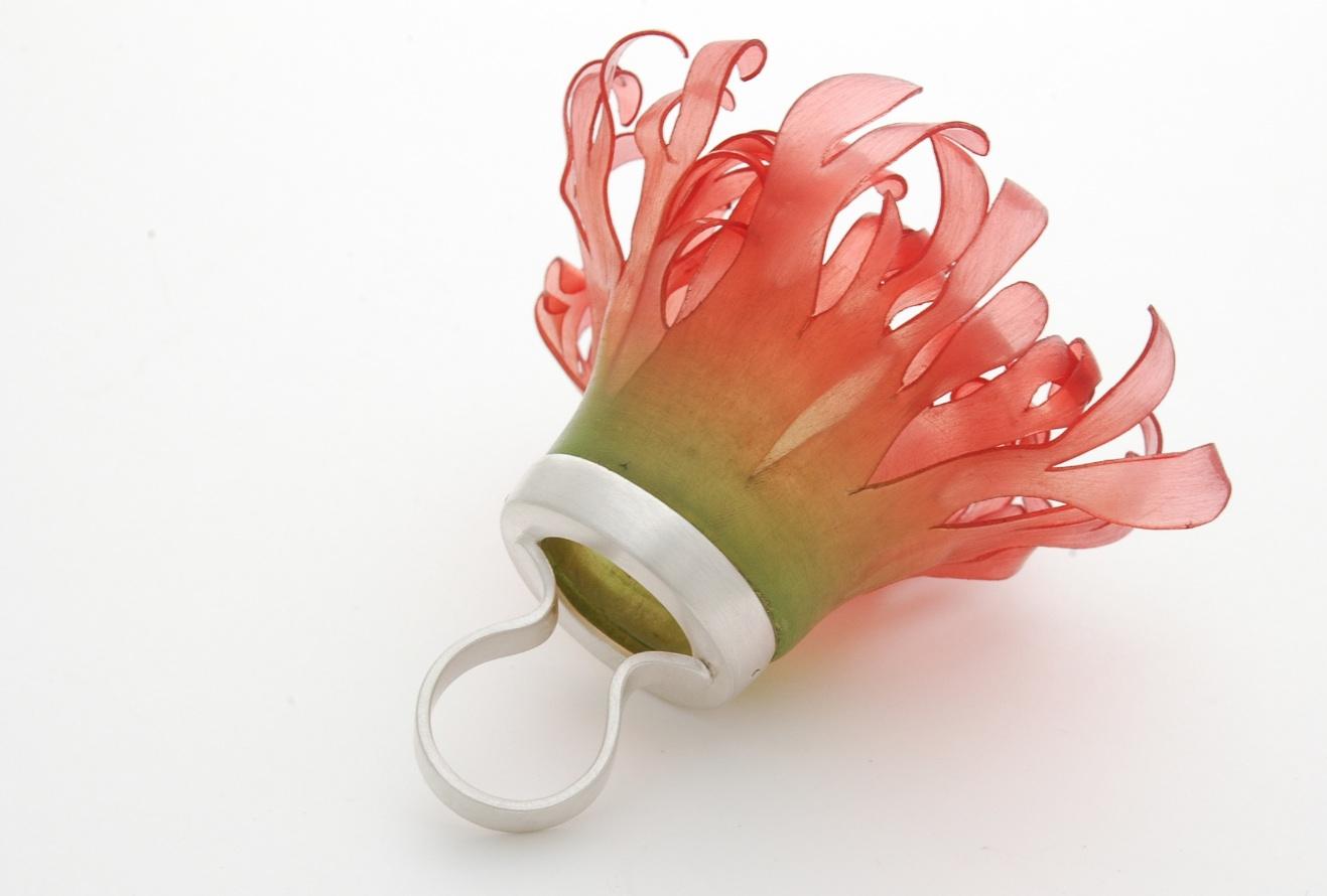 Rui Kikuchi ring