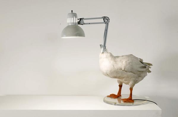 Sebastian Errazuriz Duck lamp