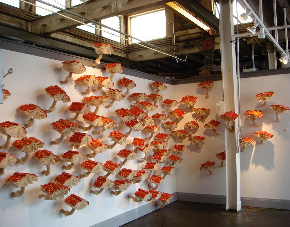 Mushroom Book Installations di Melissa Jay Craig