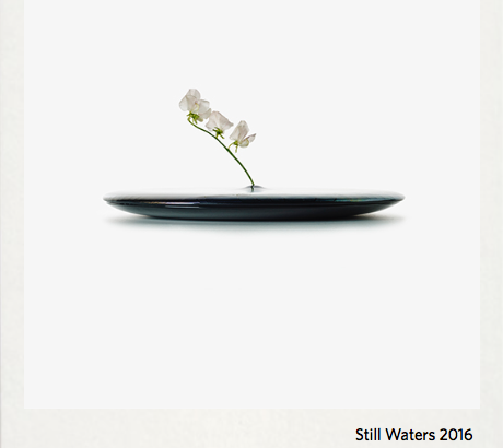 STILL WATER 2016 -STUDIO WIEKI SOMERS
