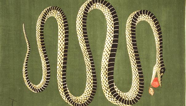 Amiamo il serpente Roubini rugs